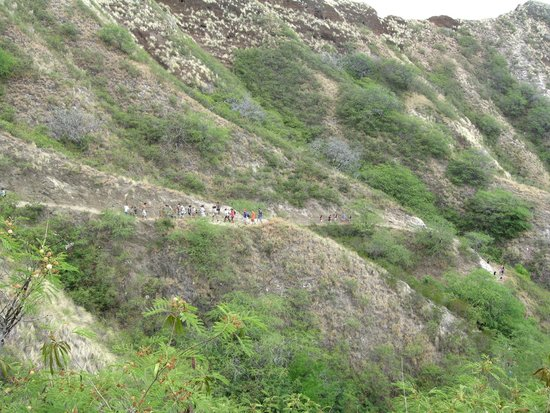 Diamond Head State Monument: View from Diamond Head- switchback trail