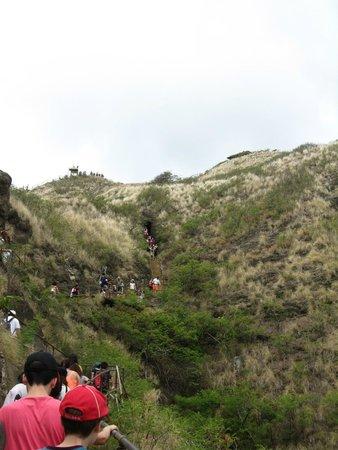 Diamond Head State Monument: View of Diamond Head