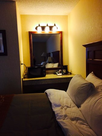 Comfort Inn Near Vail Beaver Creek: Micro