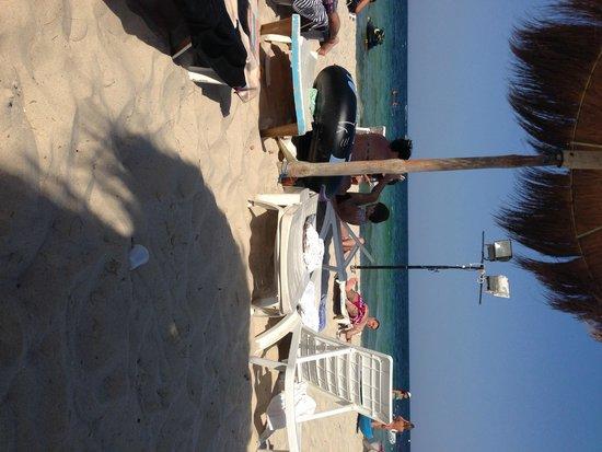 El Mouradi Club Kantaoui : beach