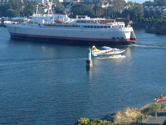Delta Victoria Ocean Pointe Resort and Spa: Victoria Harbor