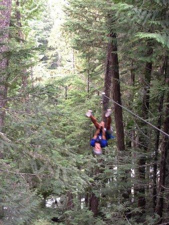 Ziptrek Ecotours : First  time upside down!