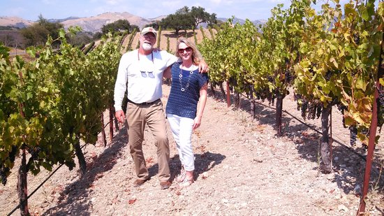 Sustainable Vine Wine Tours: In the Vineyard