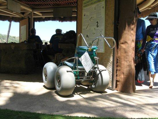 Hanauma Bay Nature Preserve : Hanauma Bay- beach wheelchair