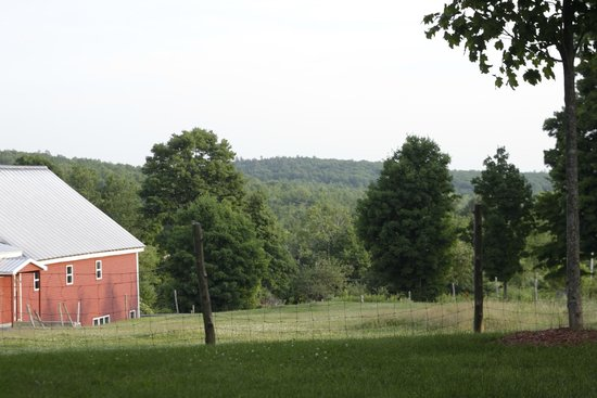 Maple Hill Farm Inn: mountain views