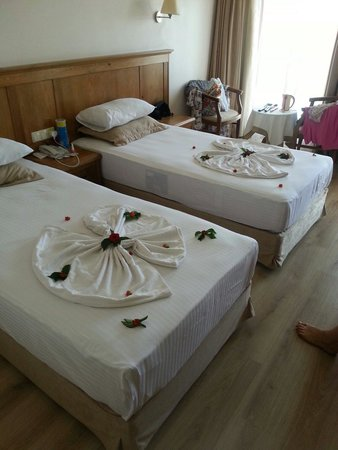 Hotel Greenland: Our maid did this for us the day before we left. She was lovely!