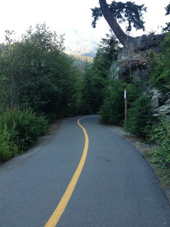 Nita Lake Lodge: Biking/ Running trail!!