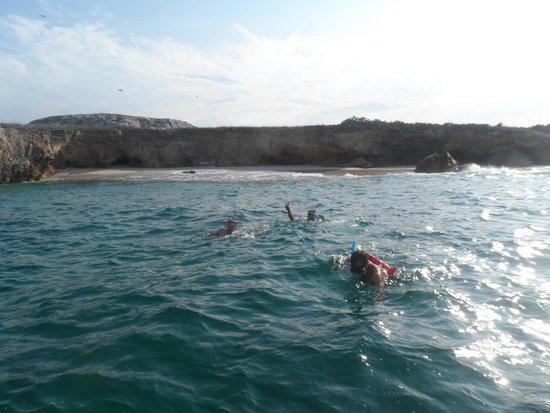 Islas Marietas: La práctica del Snorkel es lo mejor