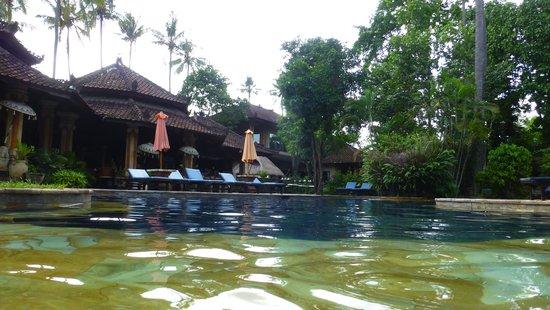 Rambutan Boutique Hotel : pool