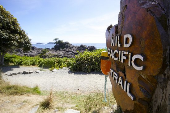 Wild Pacific Trail: The start of the trail by the lighthouse looking out to the Broken Islands