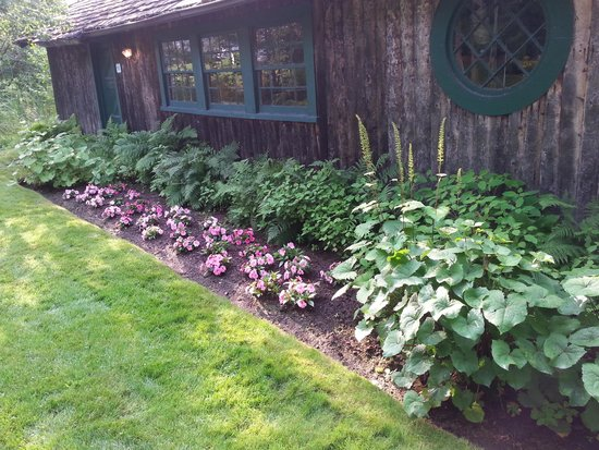 Mirror Lake Inn Resort & Spa: The flowers near the boat house where you can borrow canoes and kayaks