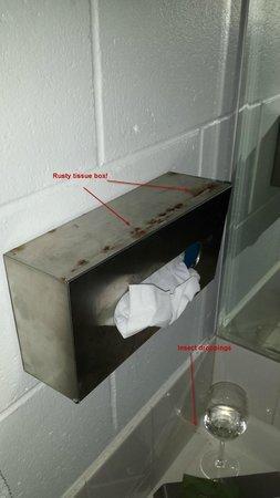 Alexandra Park Motor Inn: Tissue Box rusty