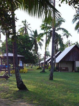 Tambua Sands: Giardino lato spiaggia
