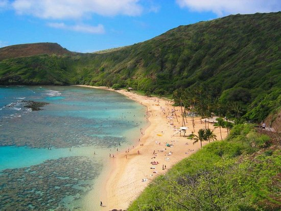 Hanauma Bay Tours