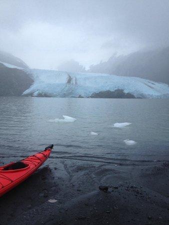 Portage Glacier: Great kayaking destination!