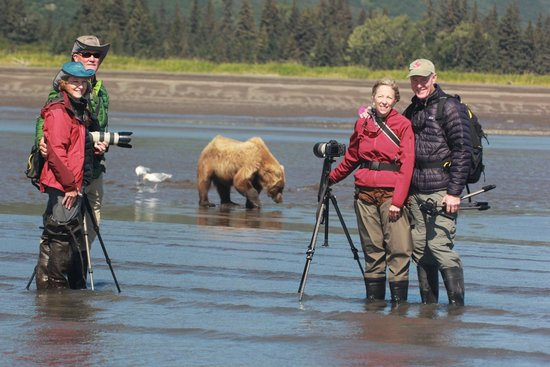 Silver Salmon Creek Lodge: Our first bear sighing - digging for razor clams