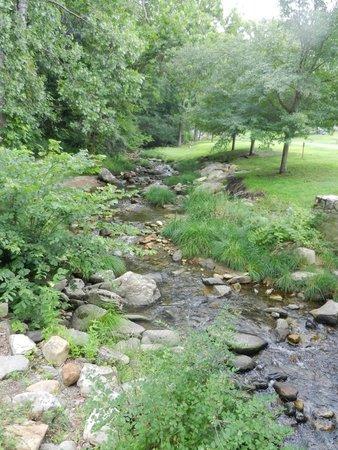 Kent Falls State Park: stream