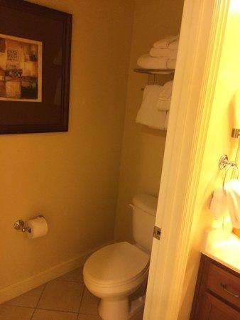 Wyndham La Cascada: Master separate toilet