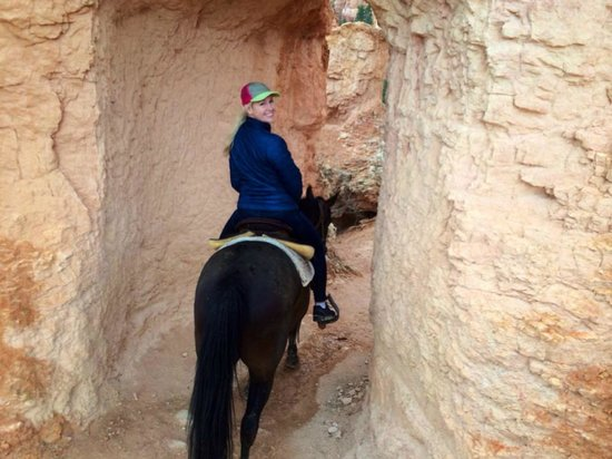 Canyon Trail Rides: On the Peek-A-Boo Loop