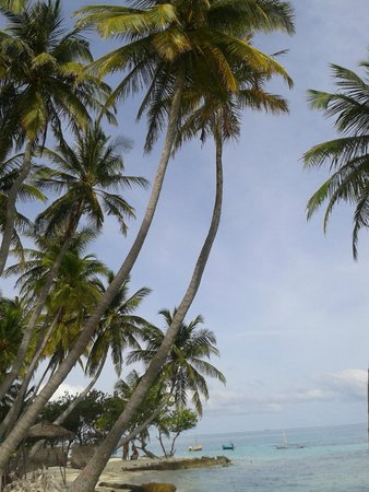 Kaani Beach Hotel : 3