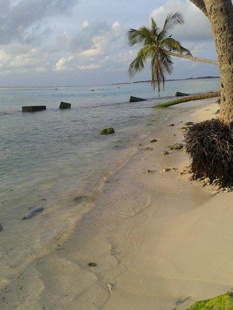 Kaani Beach Hotel : 1