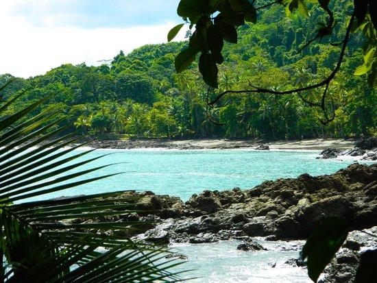 Jaguar's Jungle: Beach located short hike away
