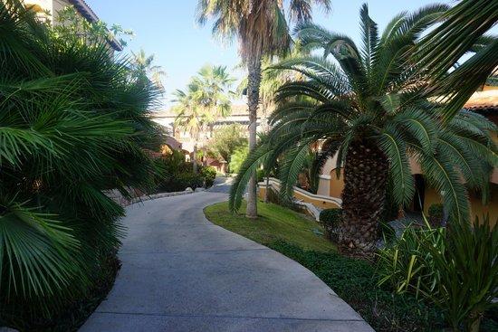 Sheraton Grand Los Cabos Hacienda Del Mar: manicured grounds