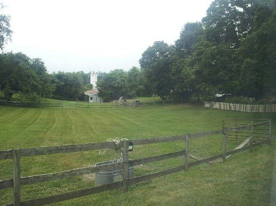 MeadowLark Farm Bed and Breakfast : The View