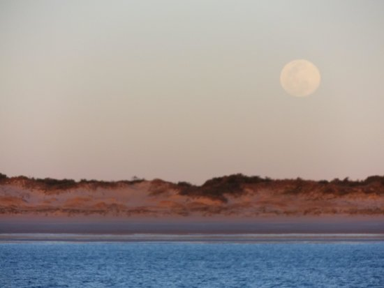 Blue Seas Resort : Full moon rising over Cable Beach
