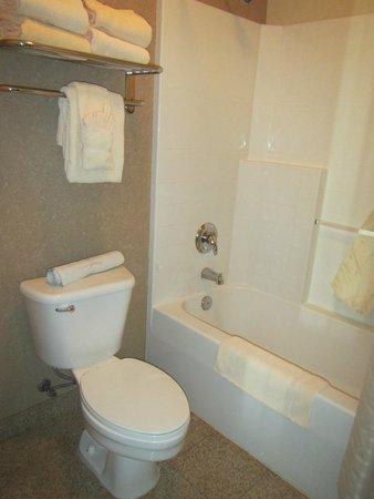 Oxford Suites Downtown Spokane: Bathroom