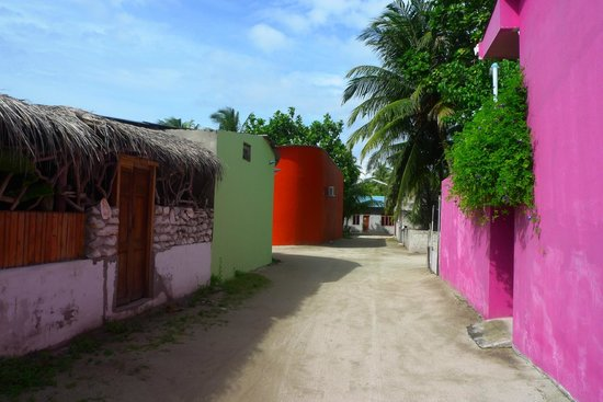TME Retreats Dhigurah: Colourful village houses