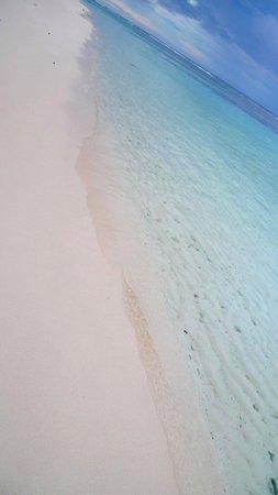 TME Retreats Dhigurah: Gorgeous clear water & white sandy beaches
