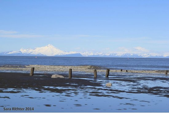 Ocean Bluff Bed and Breakfast: Ocean Bluff beach as tide is coming in