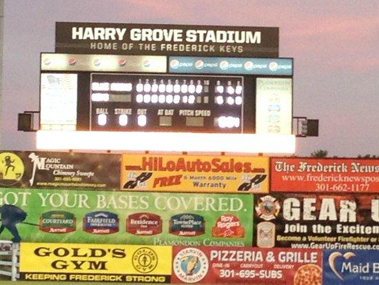 Harry Grove Stadium