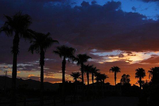 Desert View RV Resort: sunset in the rv park