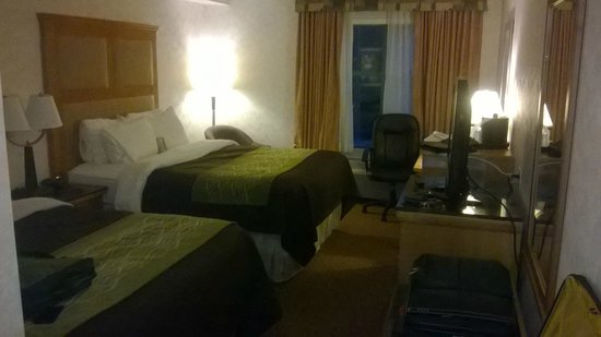Comfort Inn & Suites : Room