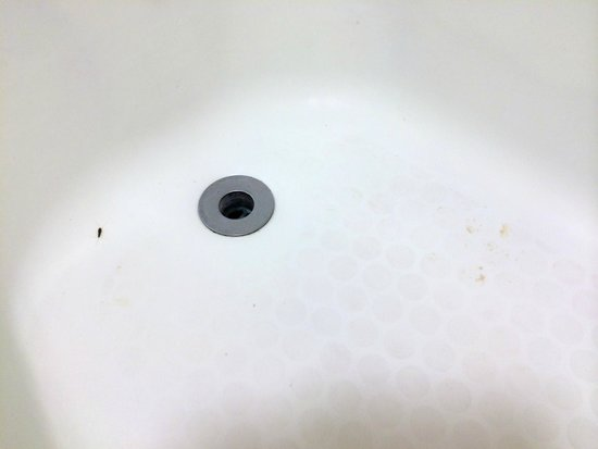 Lexington Inn & Suites: bug & mysterious stain in tub