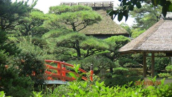Nakazubansho Garden: 魚楽亭から見た観潮楼と母屋(茶室)