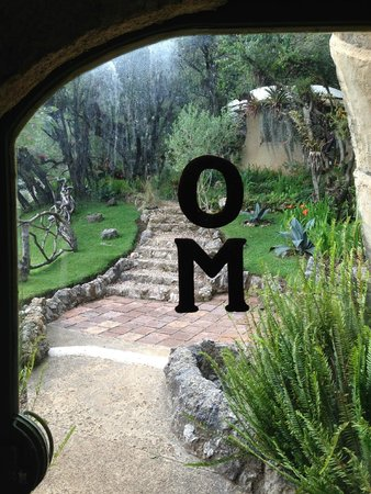 Orquideas Moxviquil OM: OM