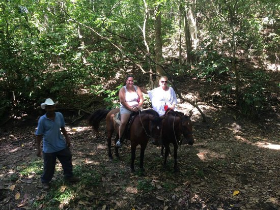 Island Marketing Ltd Roatan Cruise Excursions - Tours: Horseback Riding