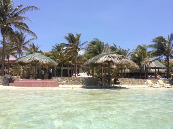 Island Marketing Ltd Roatan Cruise Excursions - Tours : Parrot Tree Resort