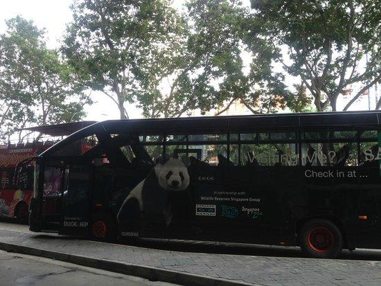 Night Safari : De bus naar het park toe.