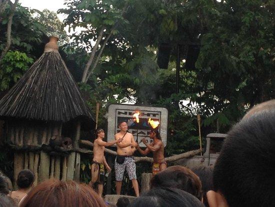 Night Safari : De show net voorbij de ingang