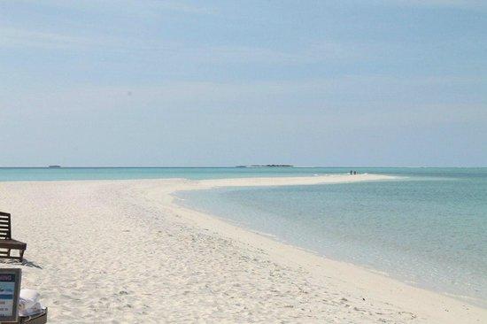 Palm Beach Resort & Spa Maldives: песчанная коса