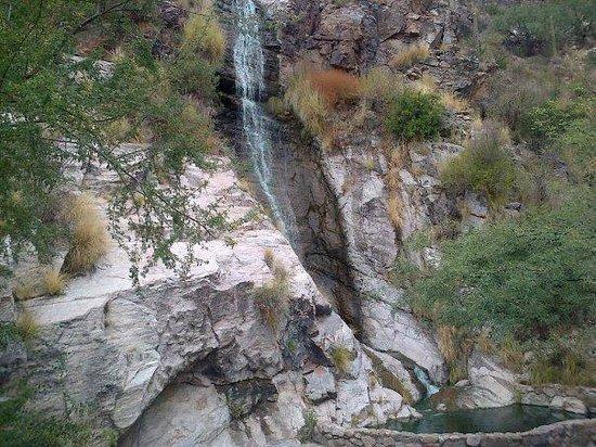 Loews Ventana Canyon Resort: CASCADA EN LOS JARDINES