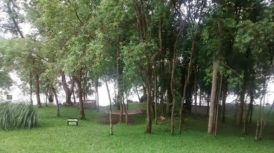 Kabini River Lodge: The river, the hammock and the quite