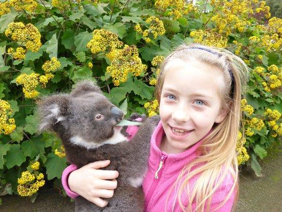 Kangaroo Island Wildlife Park: Baby Chloe with Poppy