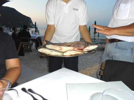 Ristorante Arturo Cucina di Mare : Peixes