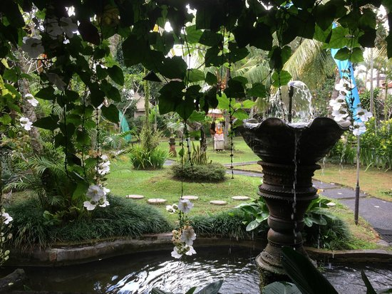 Kertiyasa Bungalow : View from Breakfast