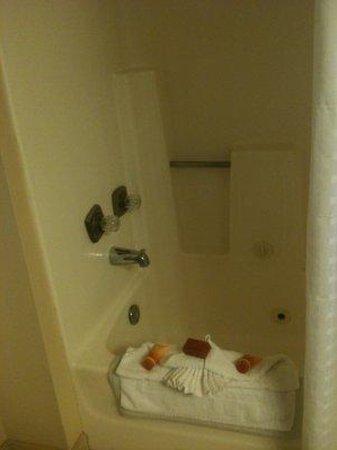 Santa Maria Inn: Bathroom